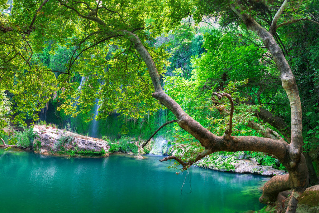 The beauty of nature on the Turkish Riviera